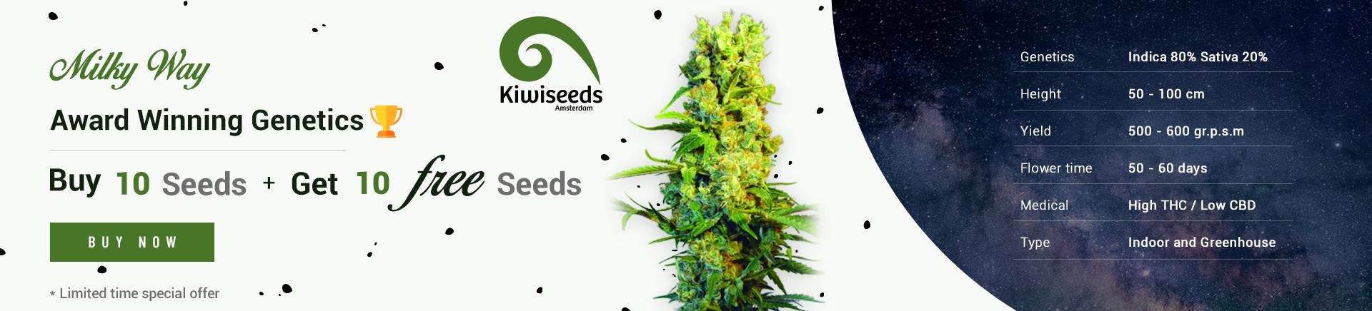 Buy 10 Get 10 free seeds